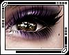 Allie Twilight Eyeshadow