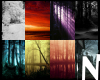 {N} PhotoDOC Dark Nature
