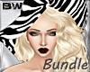 Zebra Beach Bundle