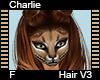 Charlie Hair F V3