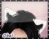 Cat Ears / B&W