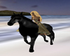 Black Ridable horse