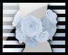 N: Sunshine Roses (RQST)