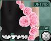 . vitae | hip roses