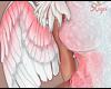 🍑P. Angel Wings