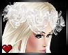 *VG* Spirit Roses
