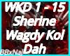 Sherine Wagdy Kol Dah