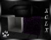 XCLX Paws Box 3 (P)