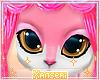 *! Furry Gold Eyes