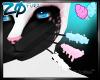 Kyadi | Whiskers