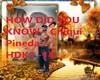 HOW DID U KNOW - Chiqui