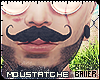 Le Monsieur Moustatche