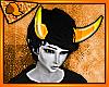 ♥ Xefros Horns
