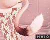 🅜 GINGER: kitten tail