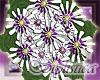 bmaid daisy bouquet(pur)