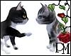 [PBM] Playful Kittens