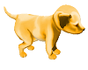 golden puppy you hold