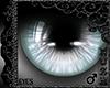 [\] ATOTT Armin Eyes