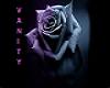 *Purple Bliss*