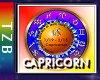 TZB Capricorn