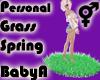 *BA Own Spring Grass