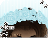 [Pets] Kimi | rose crown