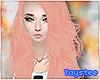 T; Angelis Blush Custom