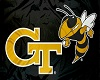 GT Yellow Jackets Flag