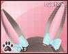 [Pets] Shel | ears v4