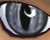 {DWW} Silver Cat Eye M