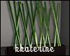 [kk] Bamboo Plant