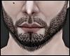 Perfect Beard Black MH
