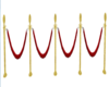 Vip area ropes
