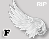R. W mystic wings F