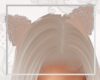 S. Cream Lace Cat Ears