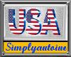 USA WALL HANG PIC