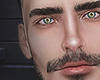 Axelperi brows/beard
