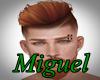 IMPI - Guel Ginger