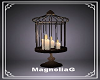 ~MG~ Candles in Cage