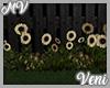 *MV* Sunflowers