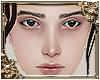 [head] KD Gemma NB