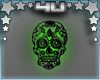 Skull Picture