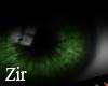 |Zir| Eyes of Forest