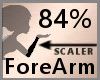 Scale ForeArm 84% F A