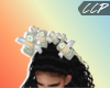 MONEY$ON$MY$MIND