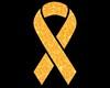 Leukemia Cancer Aware