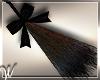 *W* Wicked Witch Broom