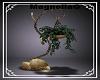 ~MG~ Shadowmoon Plant