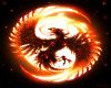 phoenix brid