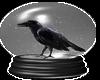 Black Raven In Globe